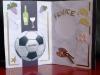 cartes-sports_13
